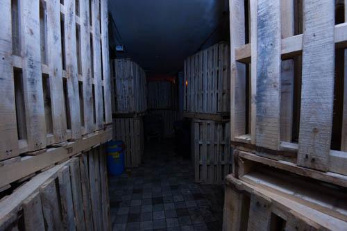 batalj zombie escape